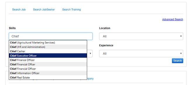 Job Portal 1