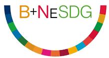 B+NESDG - Logo